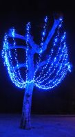Blue tree by Fennelin