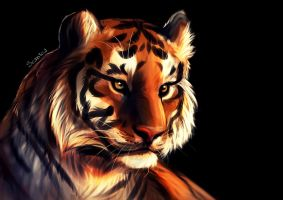 Tiger it is by Seanica