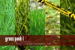 Grass Pack I by hawksmont