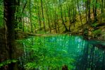 the lost pond by Jimak