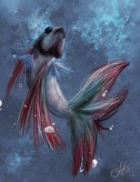 Betta Fish by WithoutName