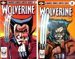 Recovered Wolverine by daawg