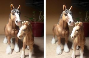 Cross view schleich Clydesdale portrait by Niirra