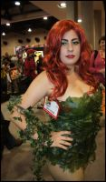 Poison Ivy - SDCC 2010 by textosterone
