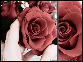Red Roses II by KiArA83