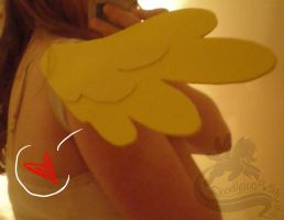 Fluttershy Cosplay Wings by Aquillic-Tiger