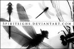 Dragonflies Image Stamps by spiritsighs-stock
