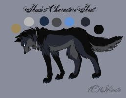 Shadow new charactere by hecatehell