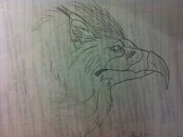 Griffin by Andrutza97