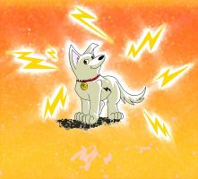 Bolt, the superdog by amy2sa-fan