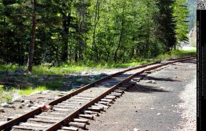 Narrow Gauge Railroad Train Tracks by DamselStock
