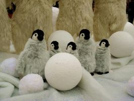 Pingouins by Kitty-Amelie