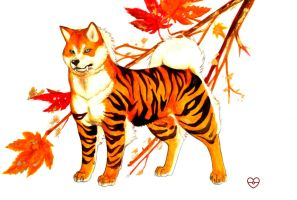 Arcanine Autumn by PokeShoppe