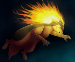 Typhlosion by howlingvoice