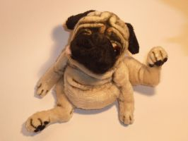 'Bits' scratching pug by mellisea