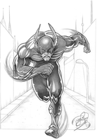 The Flash by Zelador