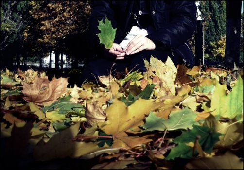 Leaves.. by StupidPain