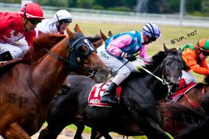 The Races 2 by Savage-PhotographyAU