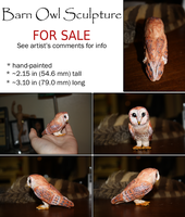 Barn Owl Details SOLD by dipnoi