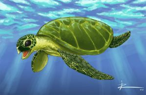 Sea Turtle by IZRA