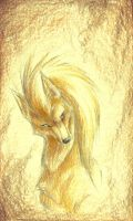 Fire fox by Canyx