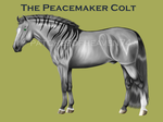 The Peacemaker Colt #9-5yr ref by patchesofheaven74