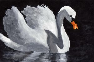 ACEO swan by lovelylittlesunshine