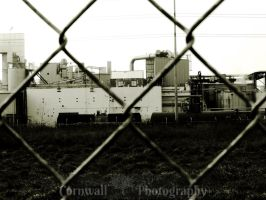 Through the Fence by VCornwall