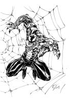 Venom web inks by devgear
