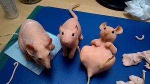 A Trio of Rat Sculptures WIP by philosophyfox