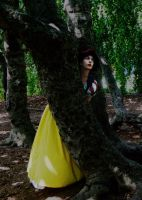 Snow White: Flight from the Huntsman by katyanoctis