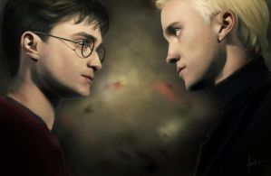Harry and Draco by dewmanna
