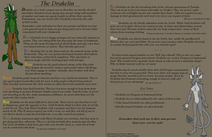 The Drakelin by BlackthornPubl
