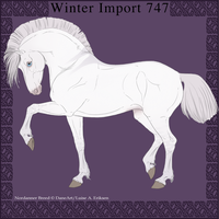 Nordanner Winter Import 747 by DemiWolfe