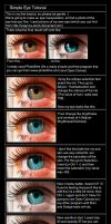 Eye Tutorial_READ DESCRIPTION by Silaynne