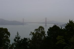 A Step Closer to the Goldengate from Presidio by mirengraphics