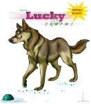 Czech WolfDog -comission by DianaEquine