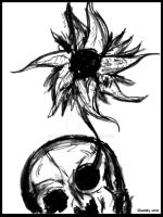 Skull/Flower by Dandy-Jon
