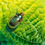 Bob the bug by Heliocyan