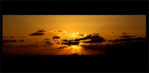 gold II by tomasNY