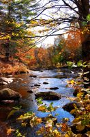 Fall in the Adirondacks by horsefeathers1