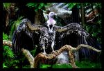 Ruppell's Griffon Vulture II by xXCold-FireXx