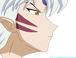 Sesshomaru.................... by ByakuyaoftheDreams