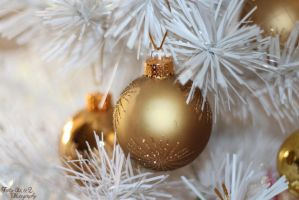 Golden Bauble by FortySixand2Photos