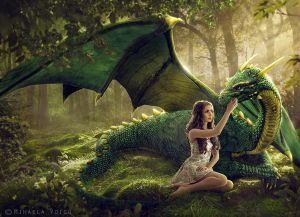 The Dragon`s Call by Mihaela-V