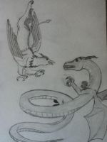 Griffon and Dragon by kate131