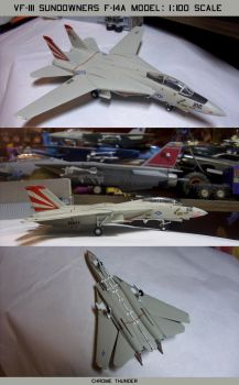 VF-111 Sundowners F-14A Model: 1:100 Scale by lonewolf3878