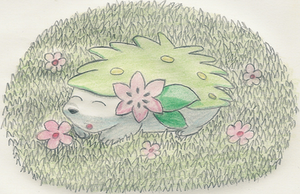 Shaymin Sleeping by 1Meh1