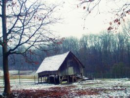 Lonely house by Laura-Pietrusel