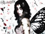 cracked butterfly by Lady-ArAdiA